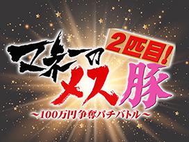 マネーのメス豚2匹目~100万円争奪パチバトル~