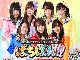 SKE48・ゼブラエンジェルのガチバトル「ぱちばん!!」シーズン1